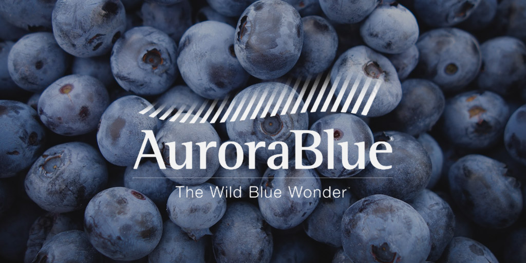 Product of the month – AuroraBlue